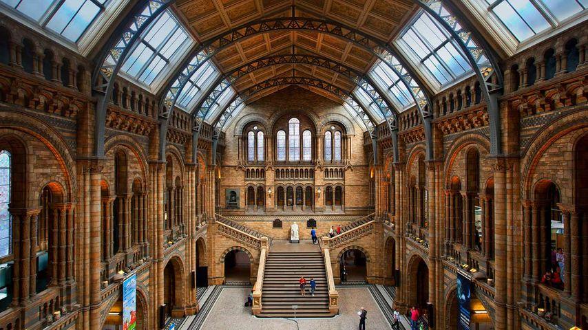「ロンドン自然史博物館」イギリス, ロンドン