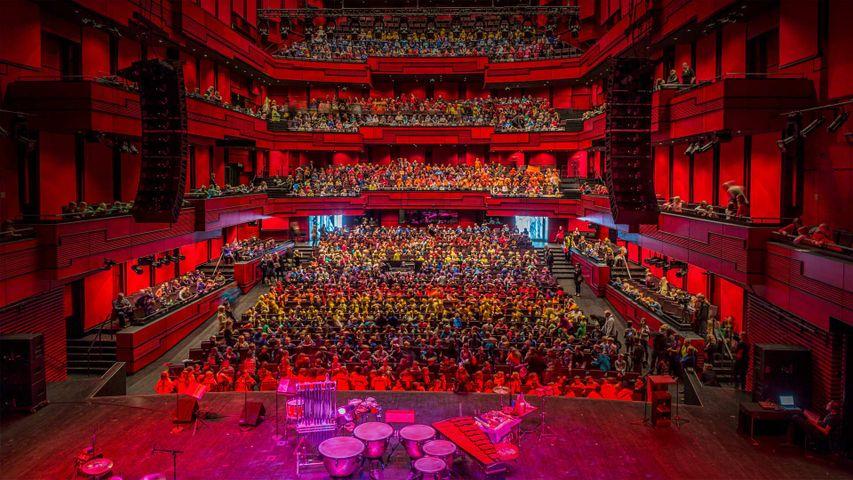 在雷克雅未克哈帕音乐厅举办的儿童文化节,冰岛