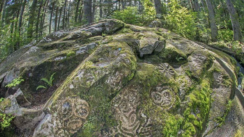 Nuxalk petroglyphs, Bella Coola, coastal B.C.