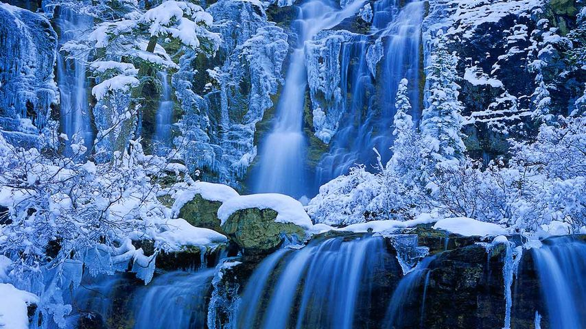 Tangle Creek Falls, Jasper National Park, Alberta
