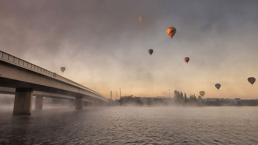 Hot air balloons seen from Lake Burley Griffin, Canberra, Australian Capital Territory