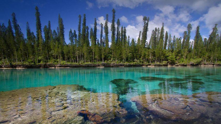 Piscine naturelle de la baie d'Oro, île des Pins, Nouvelle-Calédonie