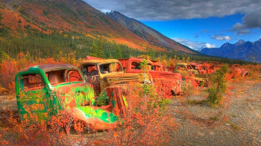 Abandoned army trucks on the North Canol Road, Yukon, Canada