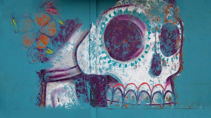 Mural of sugar skull (calavera) in Oaxaca, Mexico