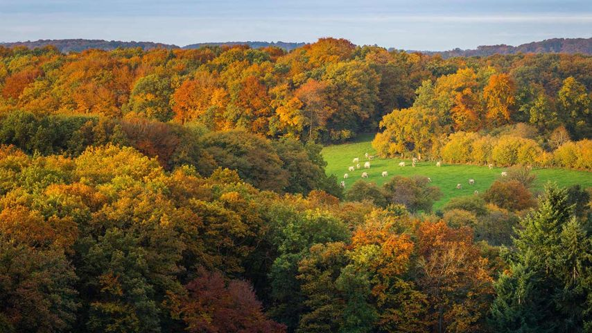 Vue depuis la Roche d'Oëtre dans la Suisse normande, Calvados, Normandie