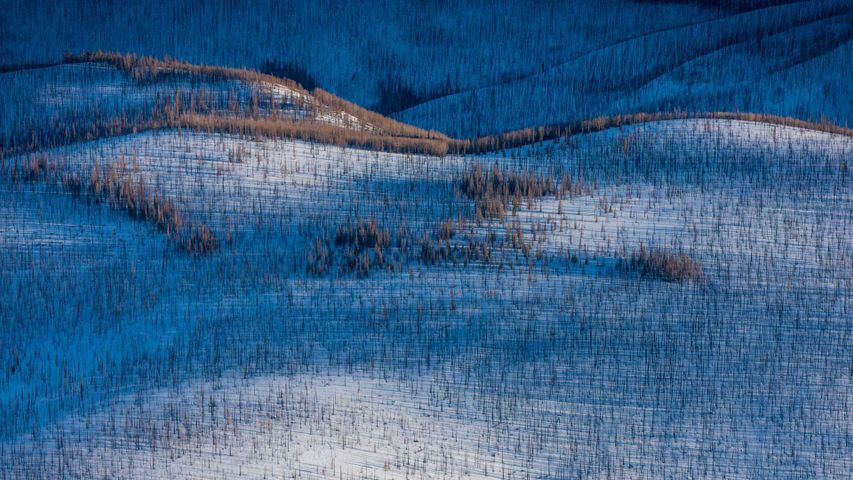 「ウルフ・クリーク峠」アメリカ, コロラド州