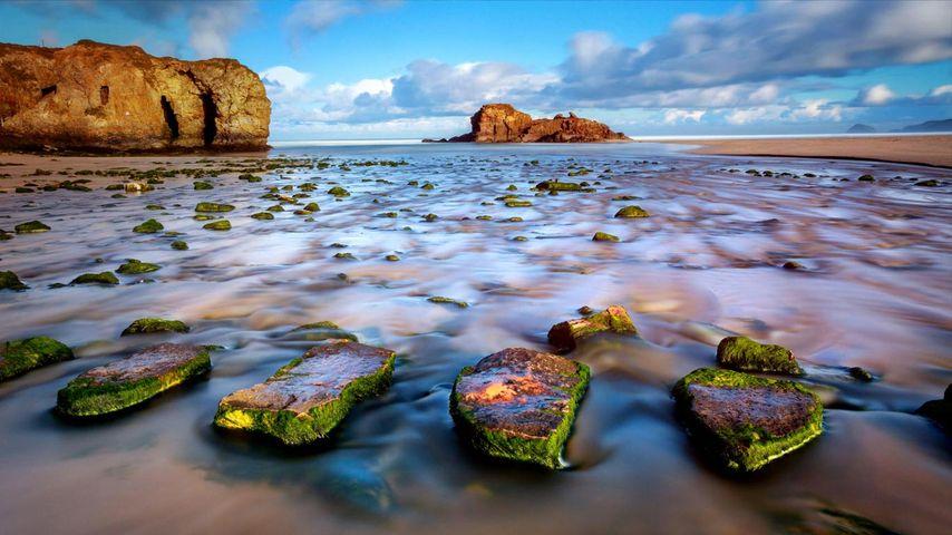 「ペランポース海岸の踏み石」イギリス, コーンウォール