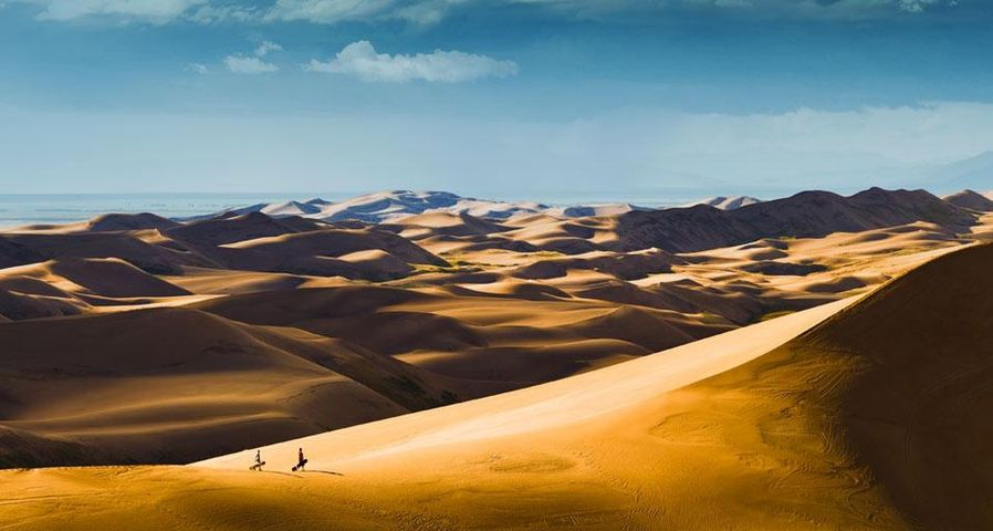 Sandboarders hiking up dunes for another ride, Great Sand Dunes National Park, Colorado, USA