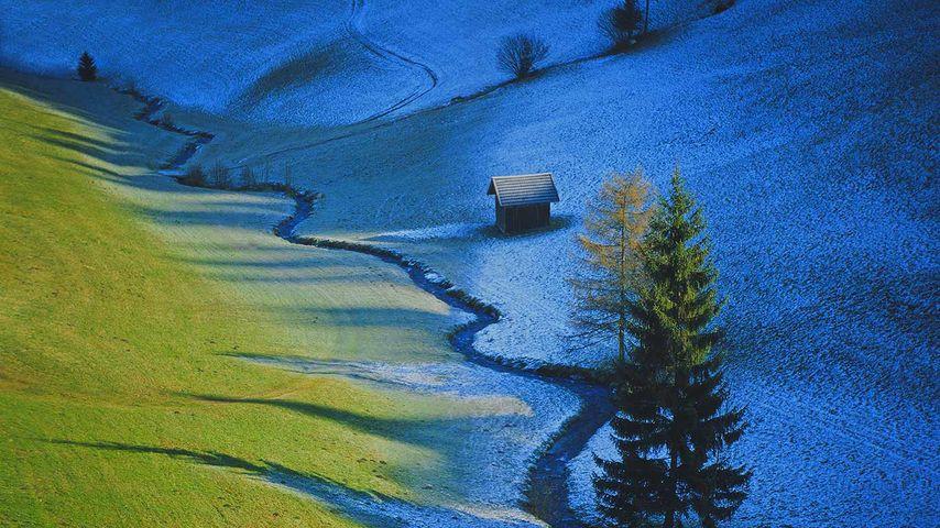 Weide bei Tulfes, Tirol, Österreich