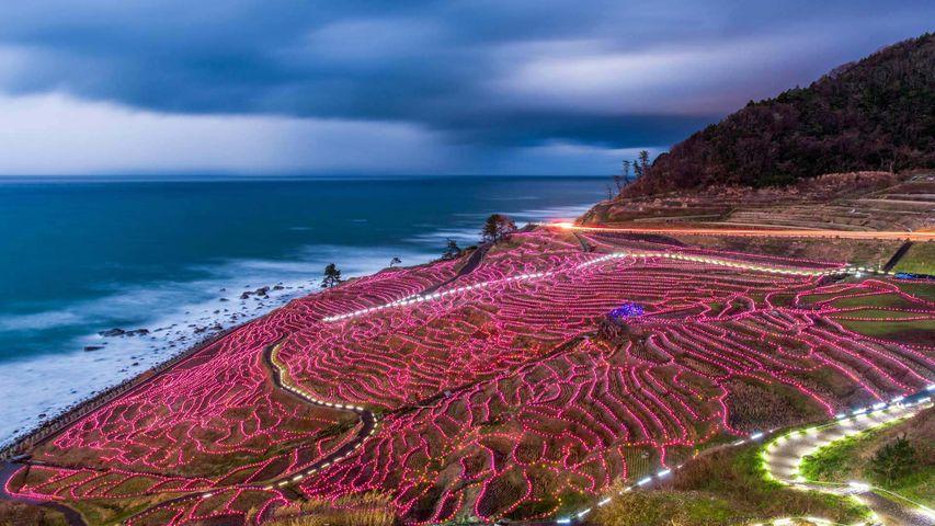 Rizières en terrasses illuminées, Wajima, Japon