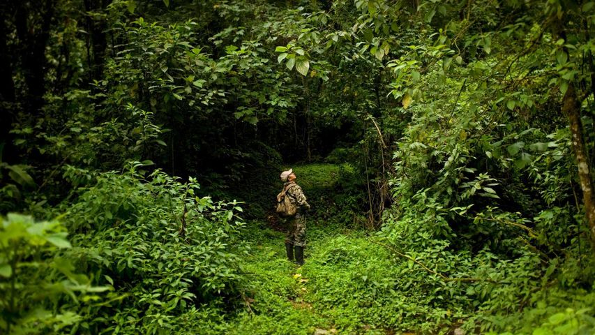 Park ranger Ismael Galvez in El Triunfo Biosphere Reserve in Mexico for World Ranger Day