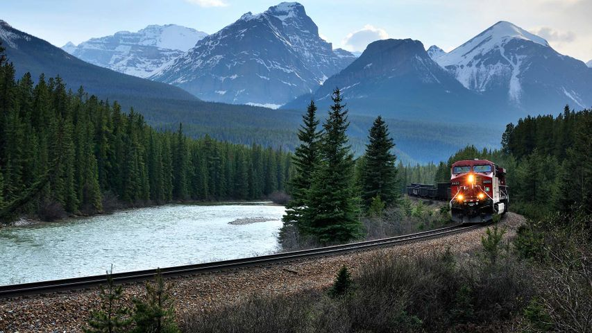 Train passing through Banff National Park, Banff, Alta.