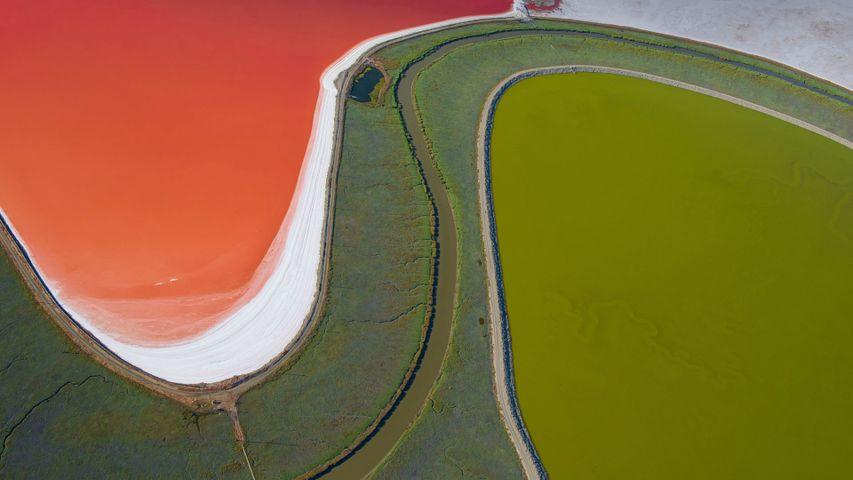 旧金山湾的盐蒸发池,美国加利福尼亚州