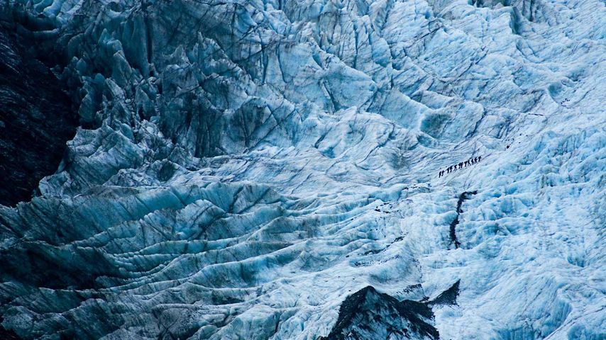 Hikers on Franz Josef Glacier, New Zealand
