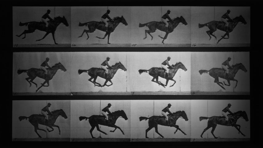 """埃德沃德 ·迈布里奇的无声短片:"""" 飞驰中的萨利·加德纳"""""""
