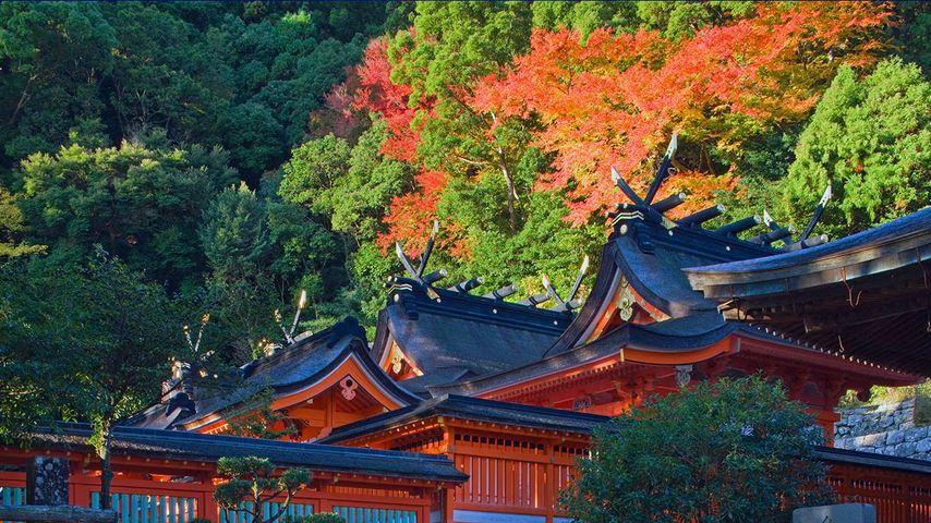 「熊野那智大社」和歌山県