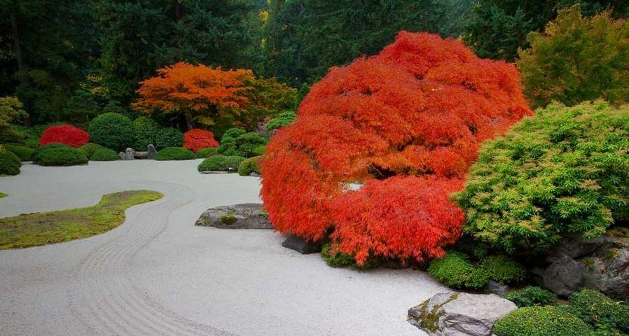 The Flat Garden at the Portland Japanese Garden, Portland, Oregon