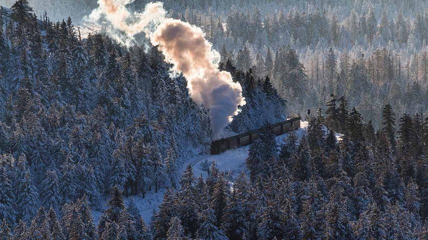 Blick vom Brocken auf einen Zug der Brockenbahn im Winter, Sachsen-Anhalt, Deutschland