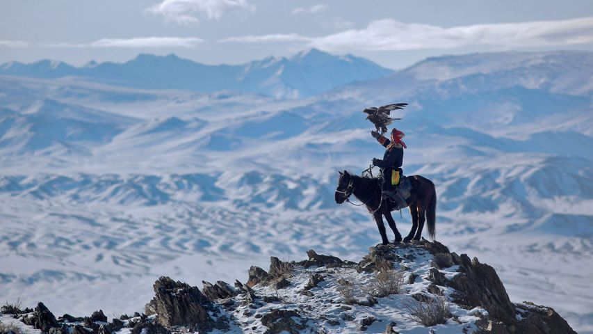 A rider hunts with an eagle in the Altai Mountains of Mongolia