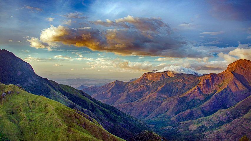 The valleys of Munnar, Kerala