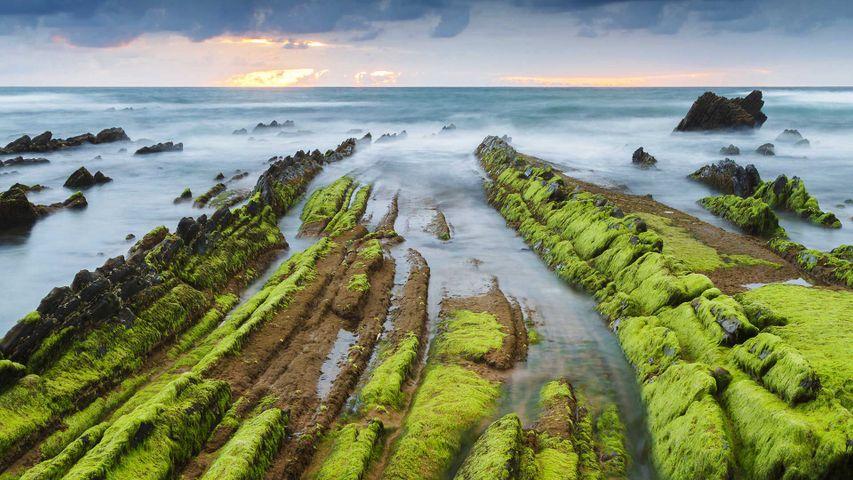 Atarceder en la costa de Barrika, Vizcaya