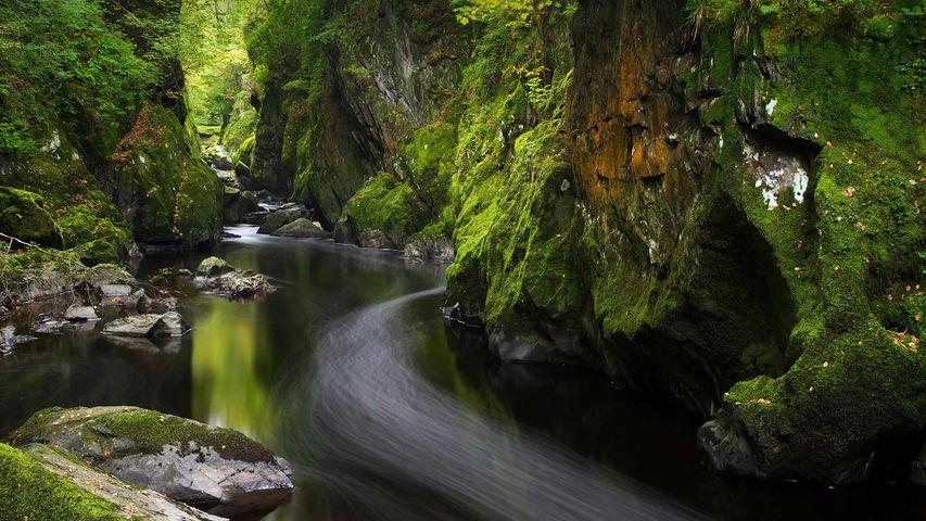 Fairy Glen, Betws-y-Coed, Wales, United Kingdom
