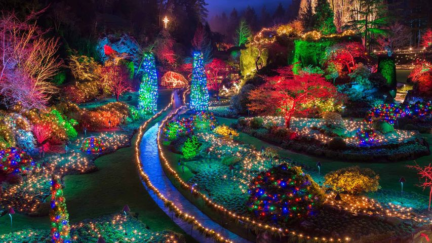 Christmas lights at the Butchart Gardens in British Columbia