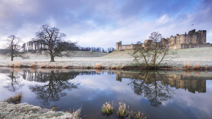 Château d'Alnwick un matin en hiver, Northumberland, Angleterre