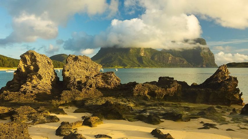 Limestone formations on Lord Howe Island, Australia