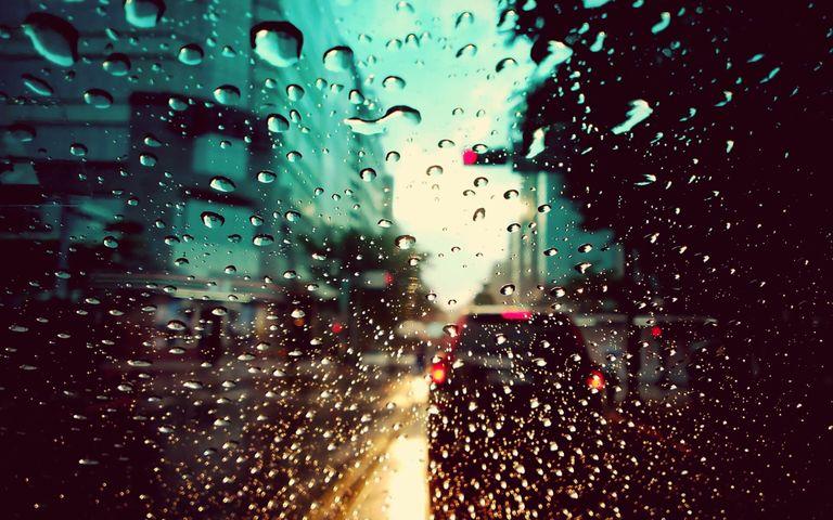 rain nature water night rainy