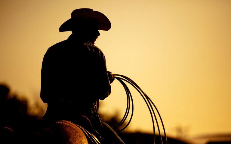 Cowboy and Ranch