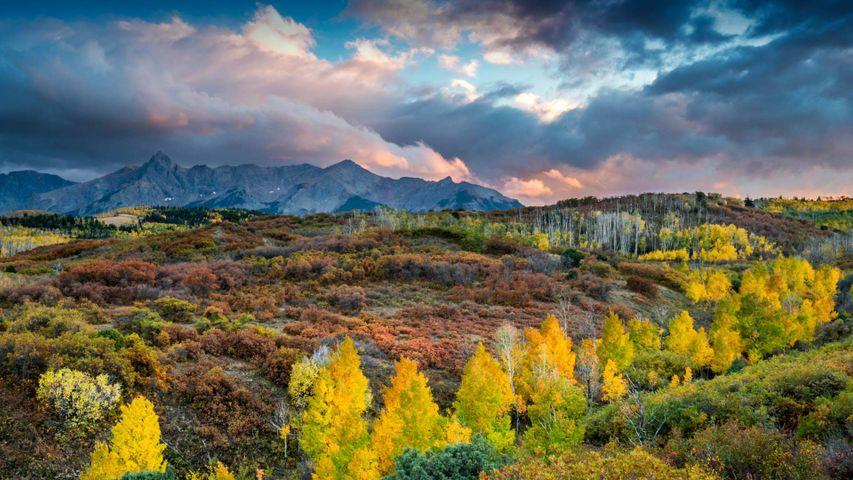 Blick vom Dallas Divide-Pass auf die Bergkette der Sneffels Range in Colorado, USA