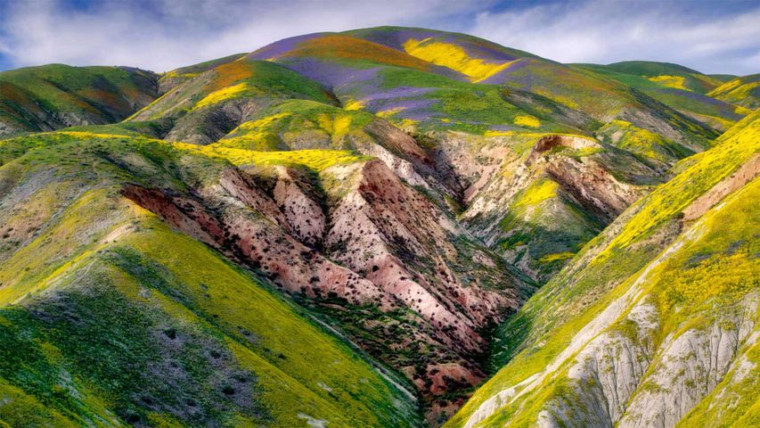 Carrizo Plain National Monument, California, USA