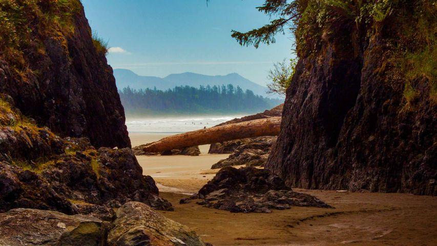 Beach near Tofino, Vancouver Island, Canada
