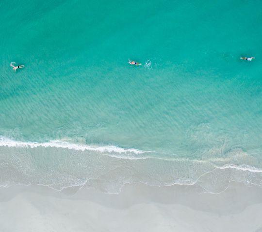 water water sport outdoor surfing sport ocean wave day