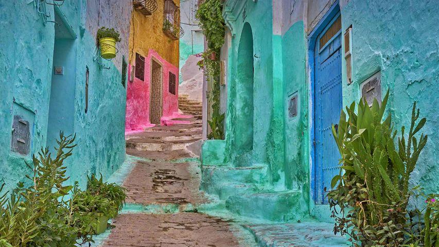 麦地那的彩色小巷, 摩洛哥得土安市