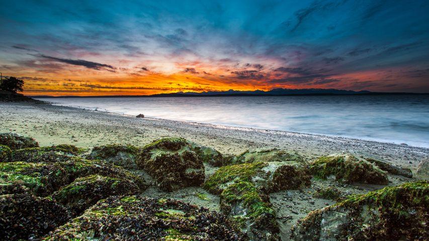 water outdoor landscape beach sunset cloud ocean sky