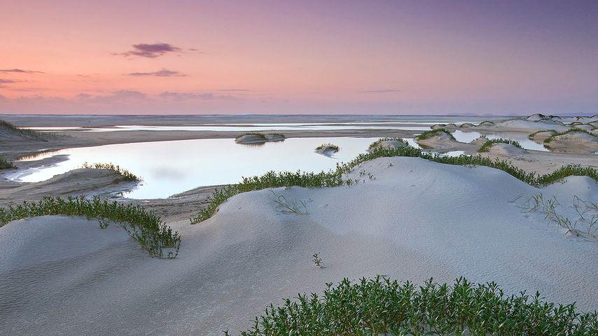 Sand forming a new landscape on Fraser Island, Queensland, Australia
