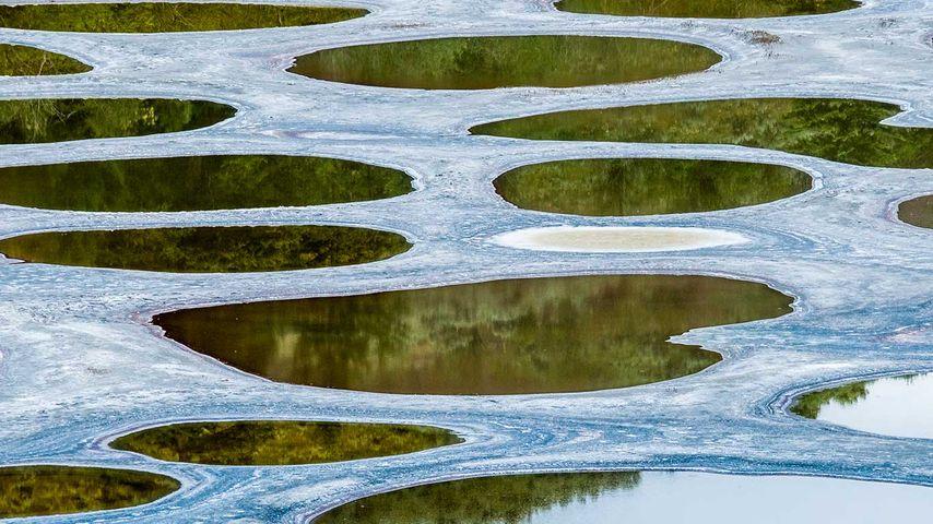 Spotted Lake, near Osoyoos, B.C., Canada