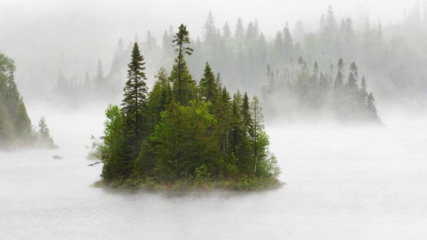 芬顿湖中雨雾缭绕的小岛,苏必利尔湖省立公园,加拿大安大略省