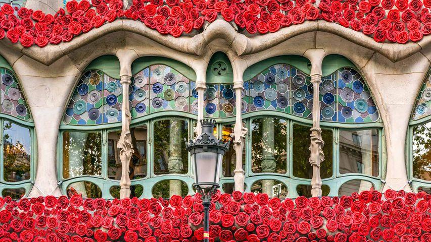 Casa Batlló decorada con rosas artificiales, Barcelona