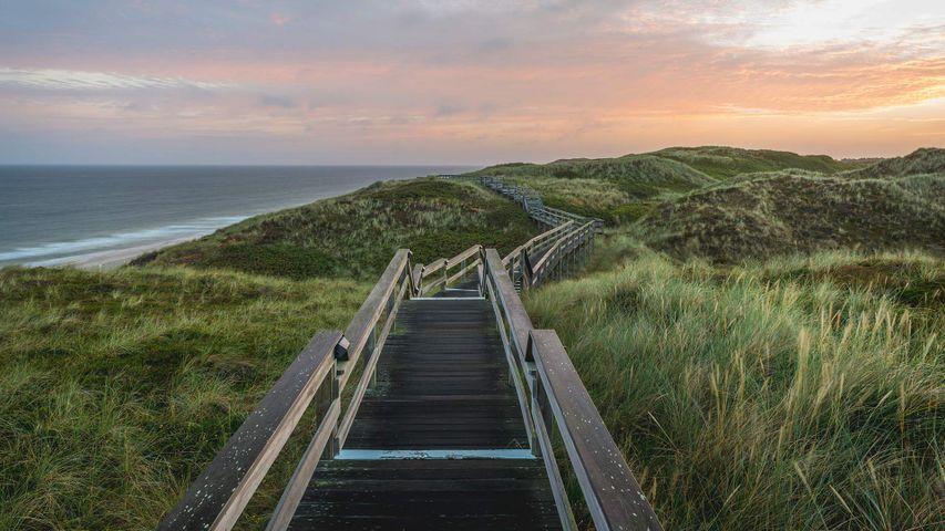通往海滩的木板路,德国叙尔特岛
