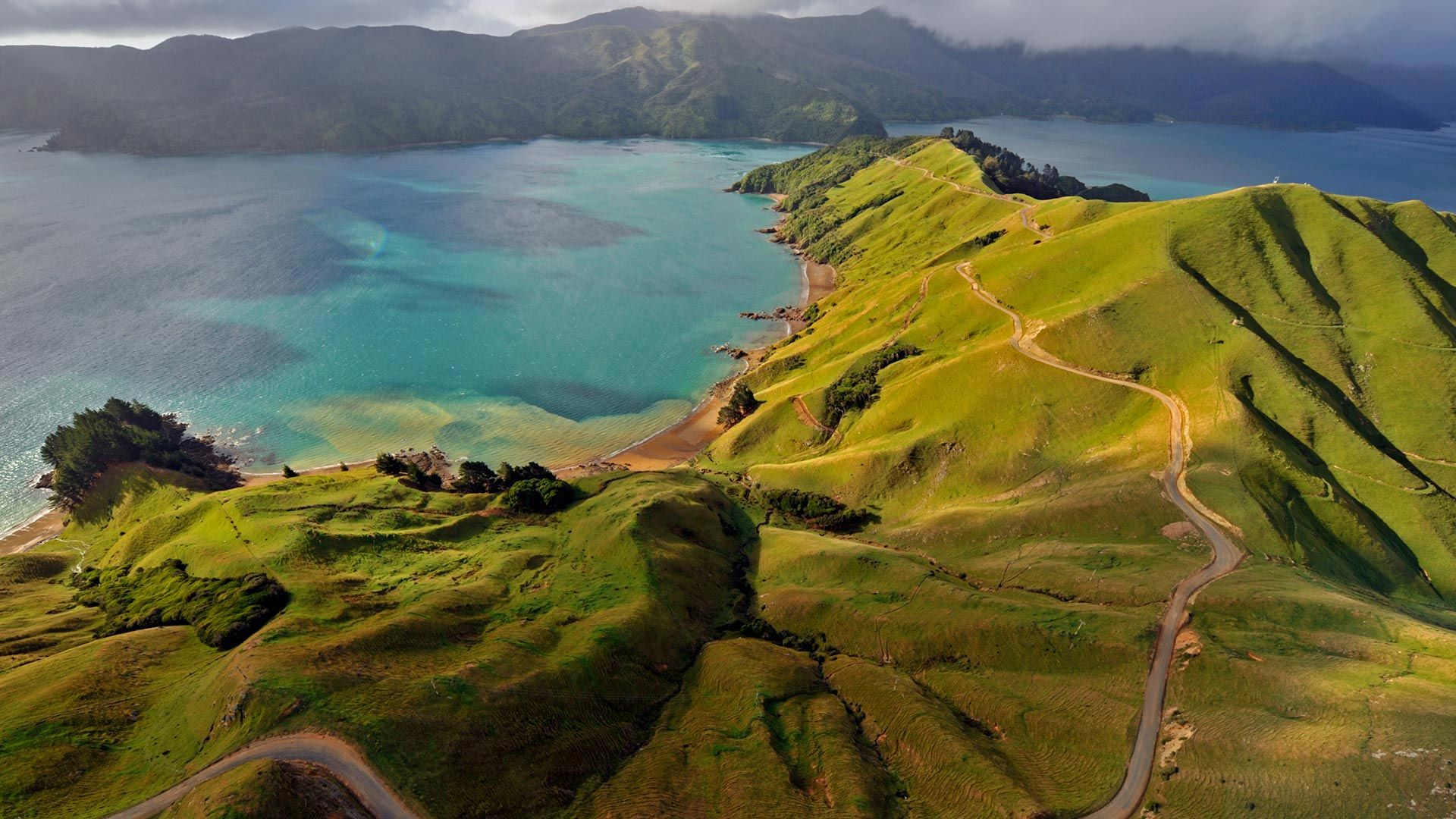 Aerial view of Marlborough Sounds, New Zealand