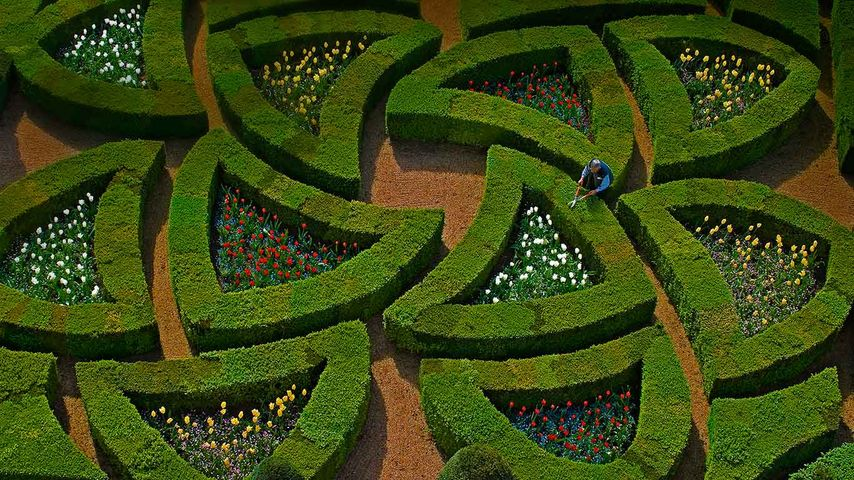 法国卢瓦尔河谷,维兰德里城堡的花园