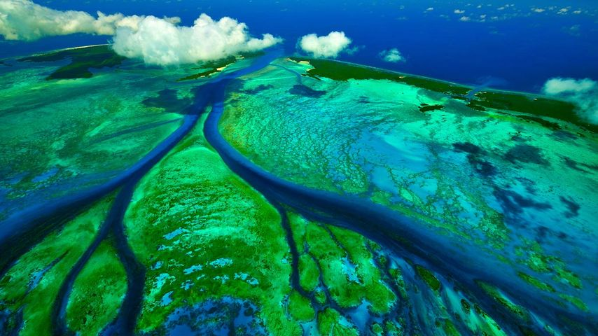 Tidal channels of Aldabra atoll near the Seychelles