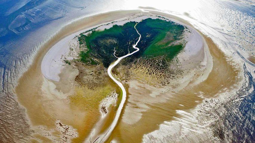 「ザイデルダイチェス島」オランダ, 西フリースラント諸島