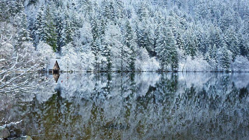 Le lac de Longemer dans les Vosges, Lorraine, France.