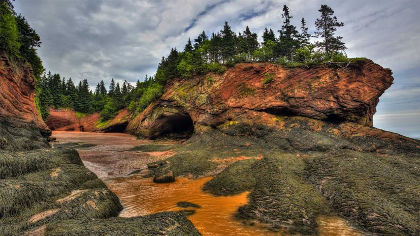 Caves and coastal features at low tide on the Bay of Fundy, near St. Martins, New Brunswick