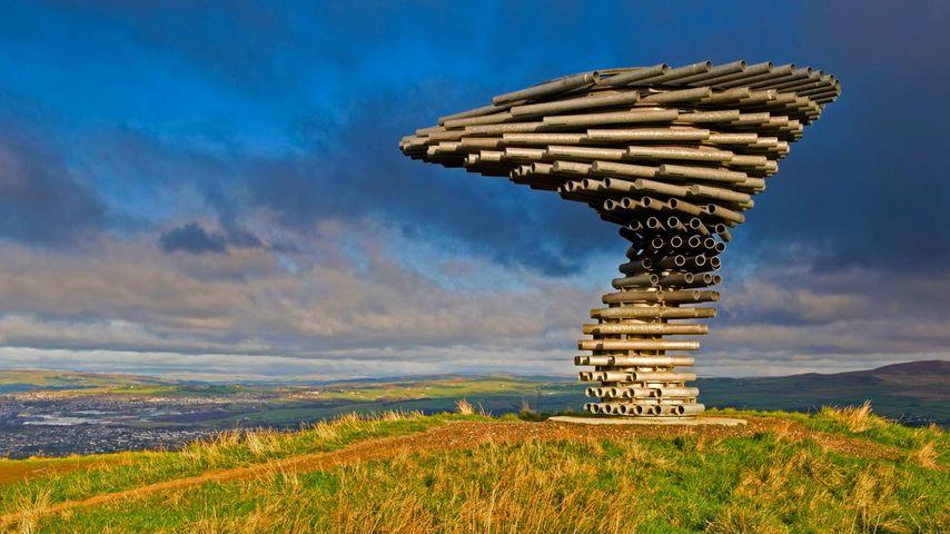 英国,伯恩利歌唱树雕塑的全景
