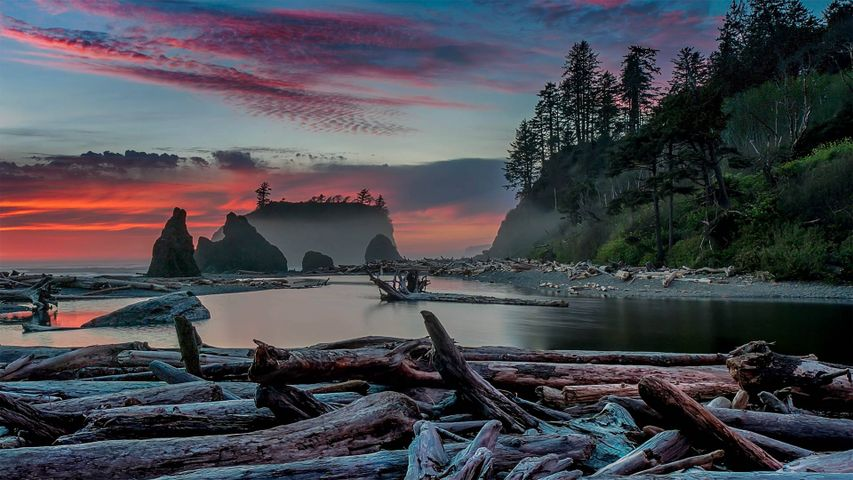 Sunset at Ruby Beach in Olympic National Park, Washington state